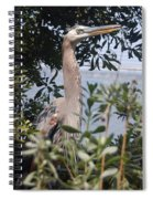 Great Blue Heron II Spiral Notebook