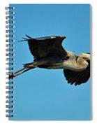 Great Blue Heron In Flight Spiral Notebook