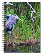 Great Blue Heron In Nature Spiral Notebook