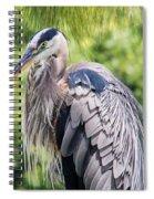 Great Blue Heron Iv Spiral Notebook