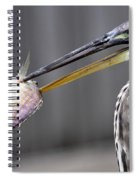 Great Blue Heron - Just Fred Spiral Notebook