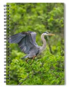 Great Blue Heron Landing Spiral Notebook