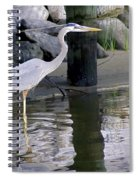 Great Blue Heron - Mealtime Spiral Notebook