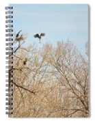 Great Blue Heron Nest Building 1 Spiral Notebook