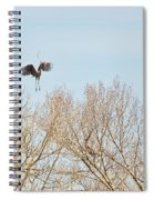 Great Blue Heron Nest Building 2 Panorama View Spiral Notebook