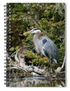 Great Blue Heron On Log Spiral Notebook