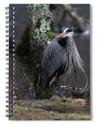 Great Blue Heron On The Clinch River Spiral Notebook