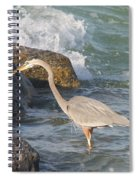 Great Blue Heron On The Prey Spiral Notebook