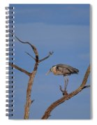 Great Blue Heron Perched On Branch Spiral Notebook