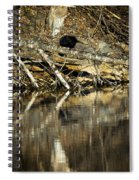 Great Blue Heron Reflection Spiral Notebook
