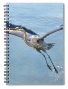 Great Blue Heron Take Off Spiral Notebook