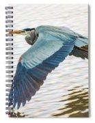 Great Blue Heron Taking Flight Spiral Notebook
