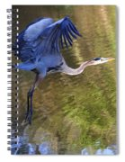 Great Blue Heron Taking Off Spiral Notebook