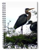 Great Blue Heron With Fledglings II Spiral Notebook