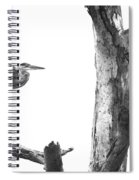 Great Blue In Black And White Spiral Notebook
