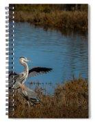 Great Blue Landing Spiral Notebook