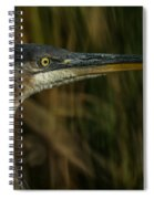 Great Blue Profile Spiral Notebook