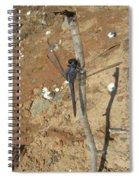 Slaty Skimmer Dragonfly Shadow Spiral Notebook