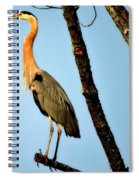 Great Blue Sunset Spiral Notebook