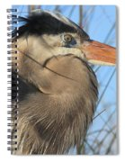 Great Blue Up Close Spiral Notebook