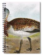 Great Bustard Spiral Notebook