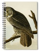 Great Cinereous Owl Spiral Notebook