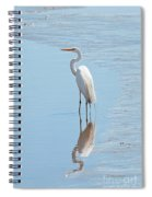 Great Egret And Reflection Spiral Notebook