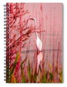 Great Egret Ardea Alba Egretta Spiral Notebook