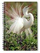 Great Egret Courtship Display Spiral Notebook