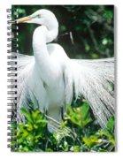 Great Egret Displaying Breeding Plumage Spiral Notebook