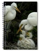 Great Egret Family 2 Spiral Notebook