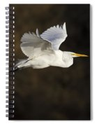 Great Egret Flying By Spiral Notebook