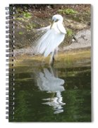 Great Egret In The Lake Spiral Notebook