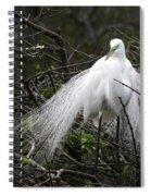Great Egret In Tree Spiral Notebook