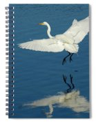Great Egret Landing Spiral Notebook