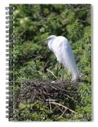 Great Egret Nest Spiral Notebook