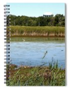 Great Egret On Berm Pond At Tifft Nature Preserve Buffalo New York Spiral Notebook