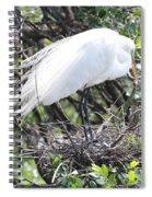 Great Egret On Nest Spiral Notebook