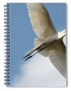 Great Egret Overhead Spiral Notebook