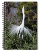 Great Egret Showoff Spiral Notebook