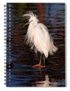 Great Egret Walking On Water Spiral Notebook