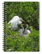 Great Egret With Chicks On The Nest Spiral Notebook