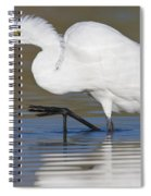 Great Egret With Leg Up Spiral Notebook