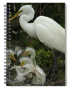 Great Egret With Young Spiral Notebook