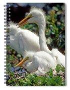 Great Egrets Spiral Notebook