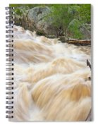 Great Falls White Water #3 Spiral Notebook