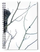 Great Grey Owl On Watch Spiral Notebook