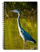 Great Heron Spiral Notebook