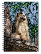 Great Horned Owl Family Spiral Notebook