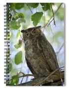 Great Horned Owl On A Branch  Spiral Notebook